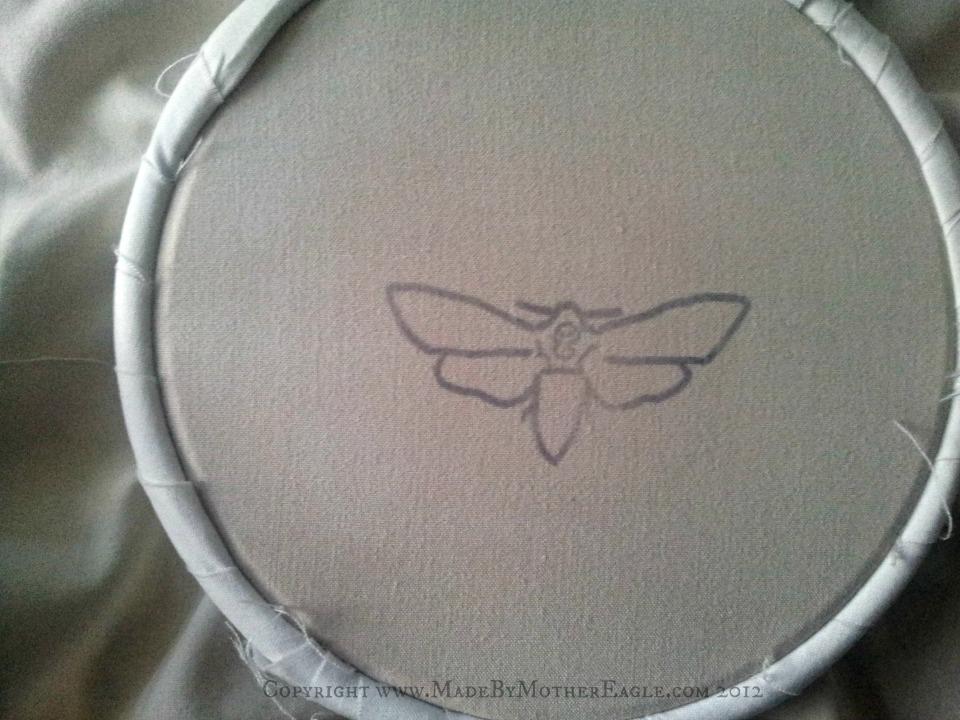 moth pattern