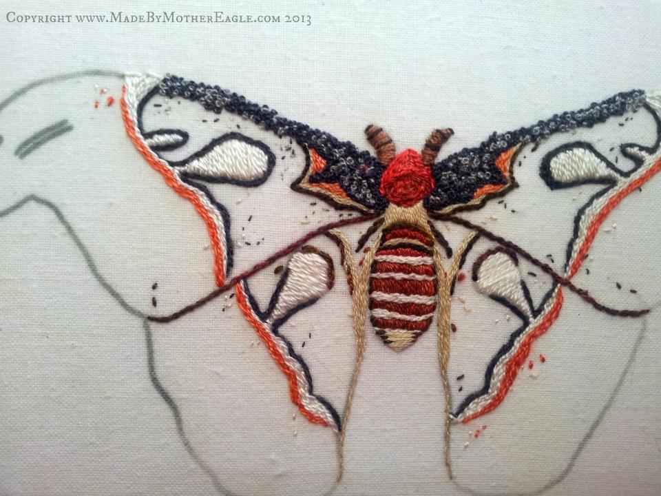 moth13