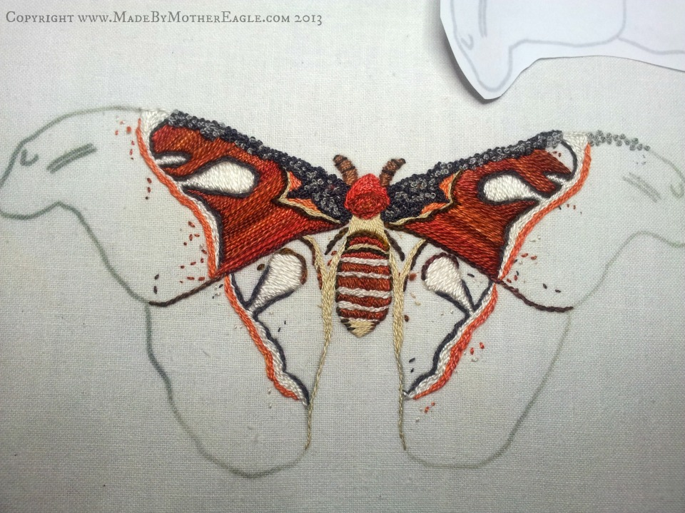 atlas moth work in progress