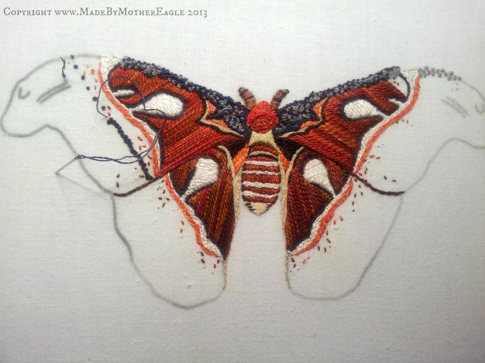 moth17