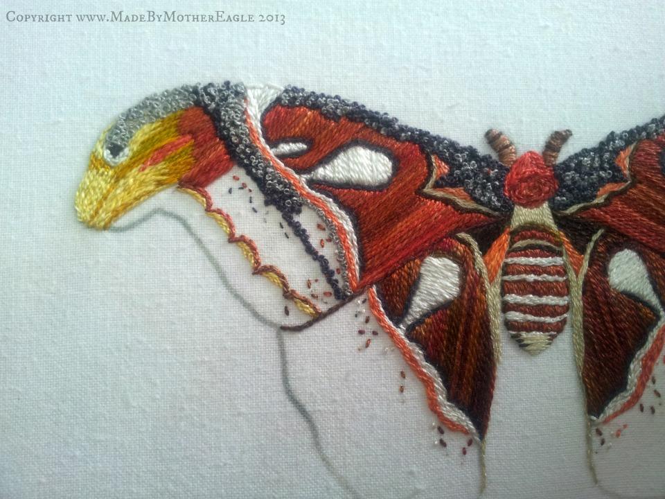 moth20
