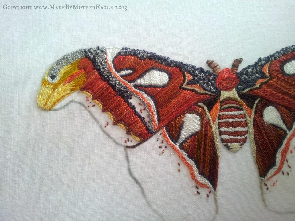 moth21