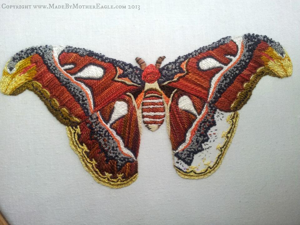 moth33