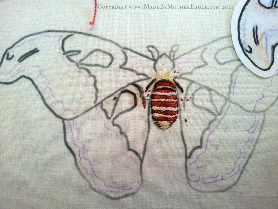 Atlas Moth embroidery