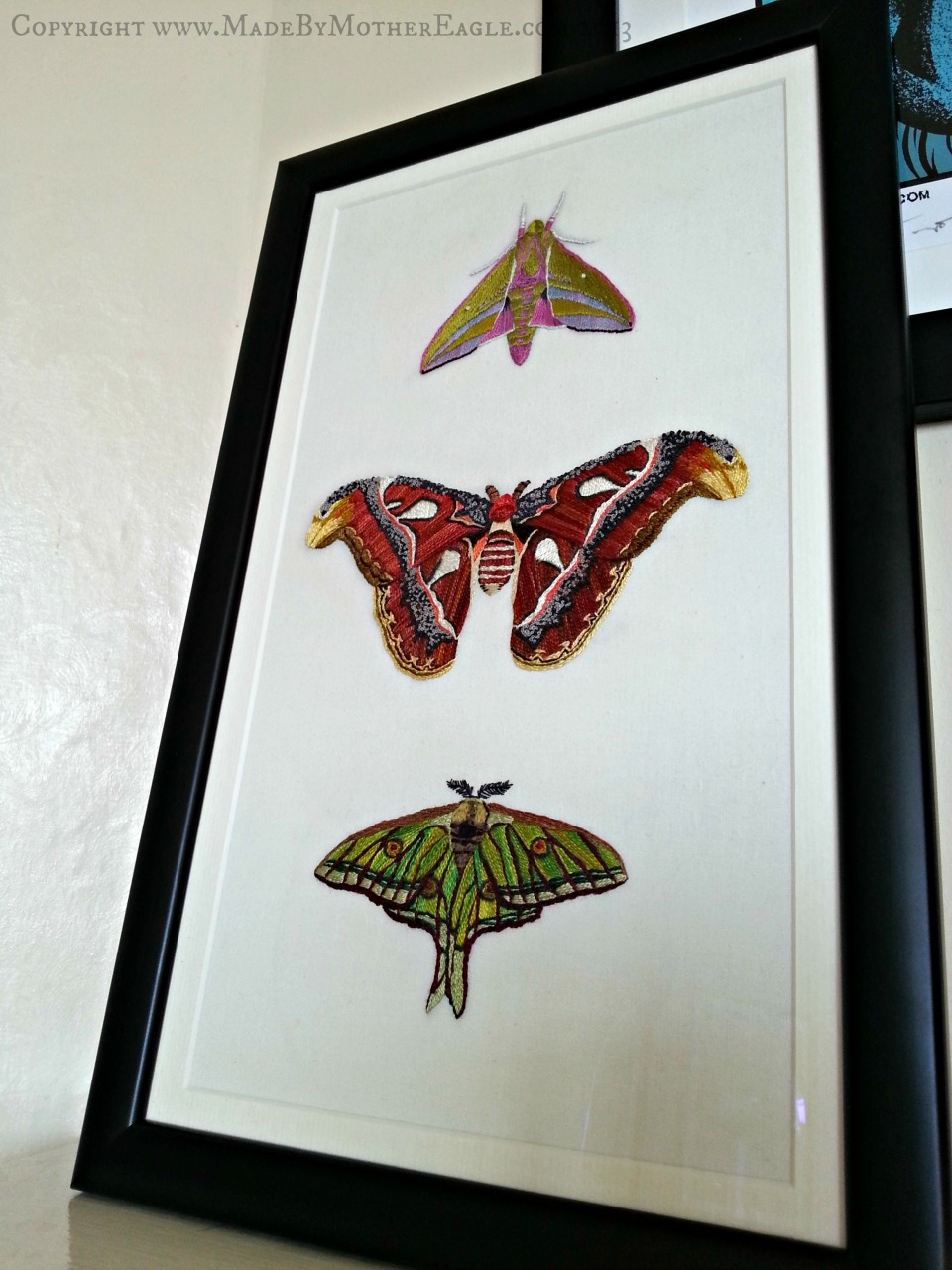 finished moths2