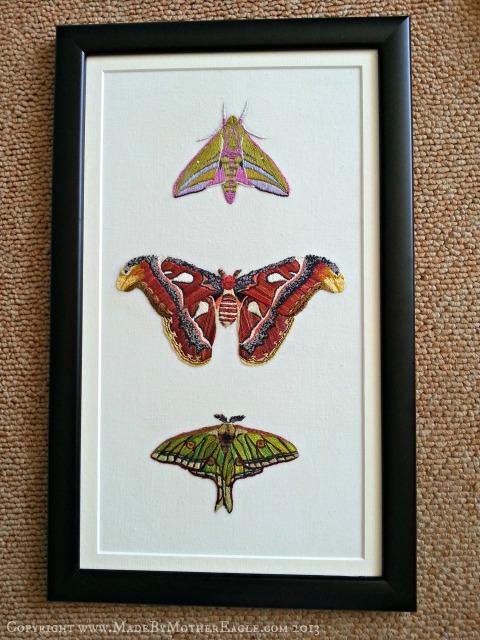 Moth Trio